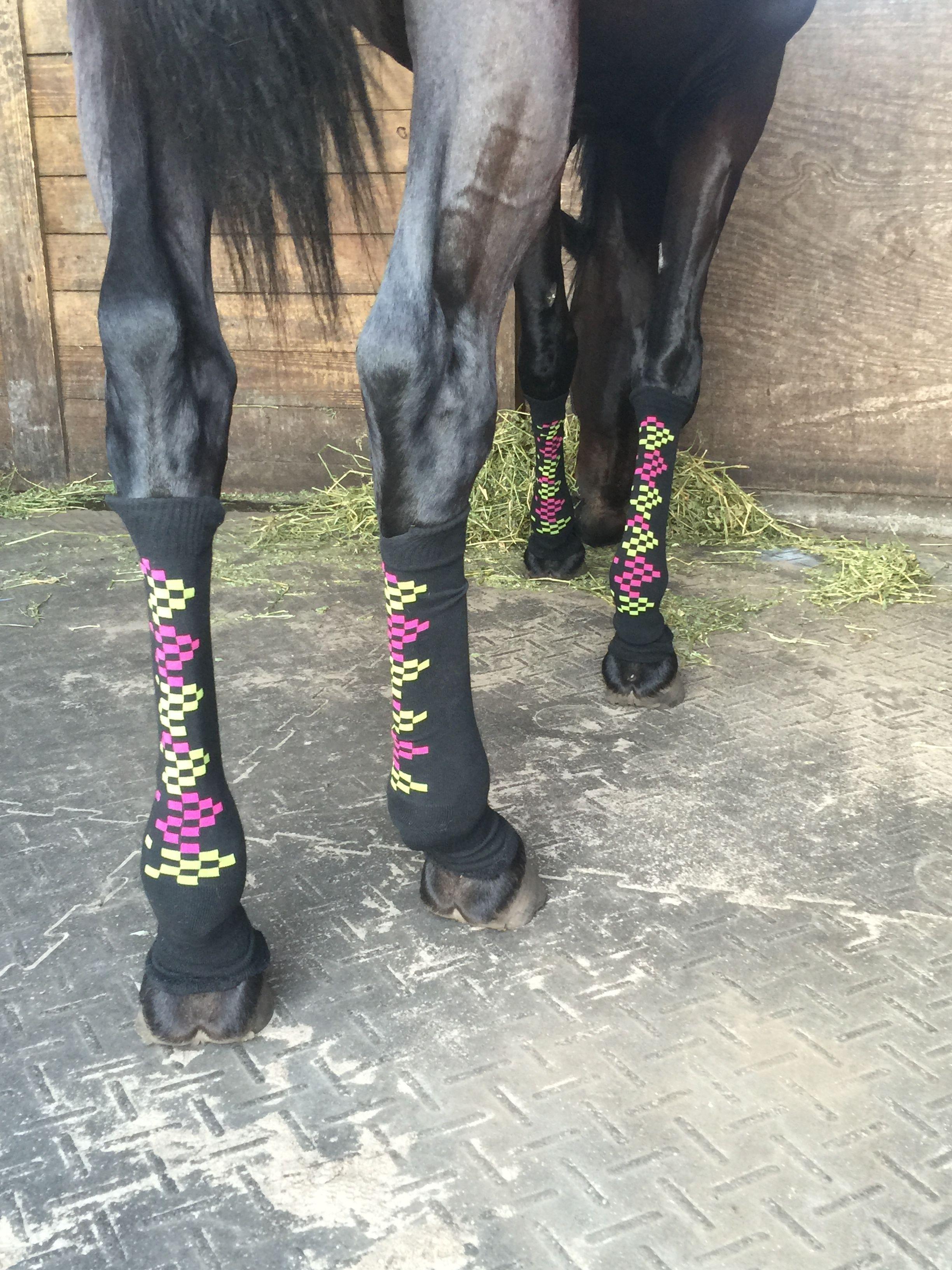 Grandes Chaussettes enfilées sur les membres d'un cheval marron