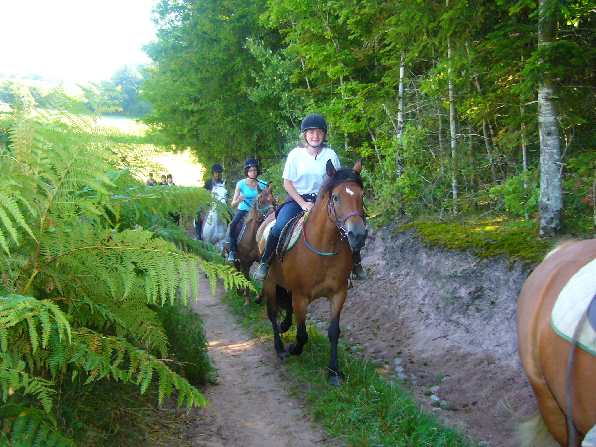 visiter le Morvan à cheval